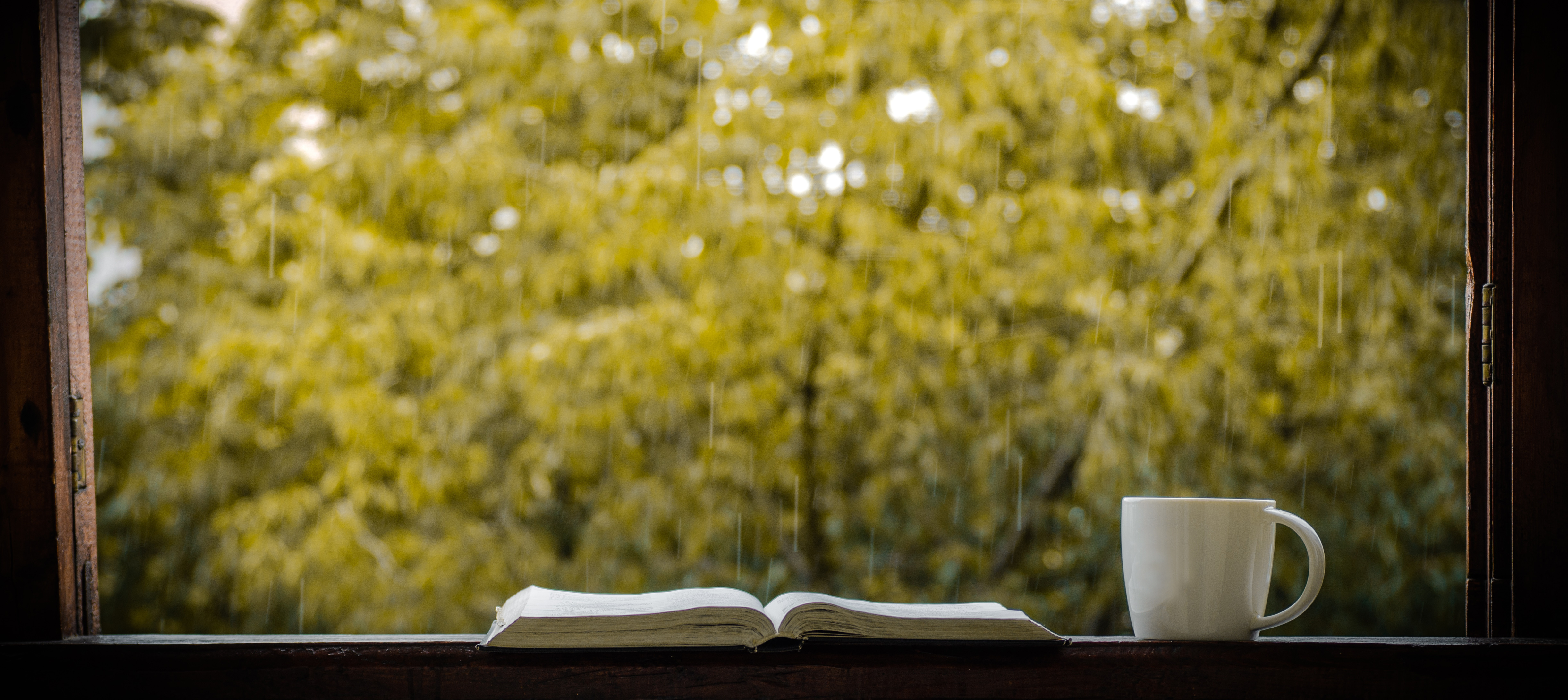 Cozy autumn still life: cup of hot coffee and opened book on vintage windowsill and rain outside. Autumn. Apartment.