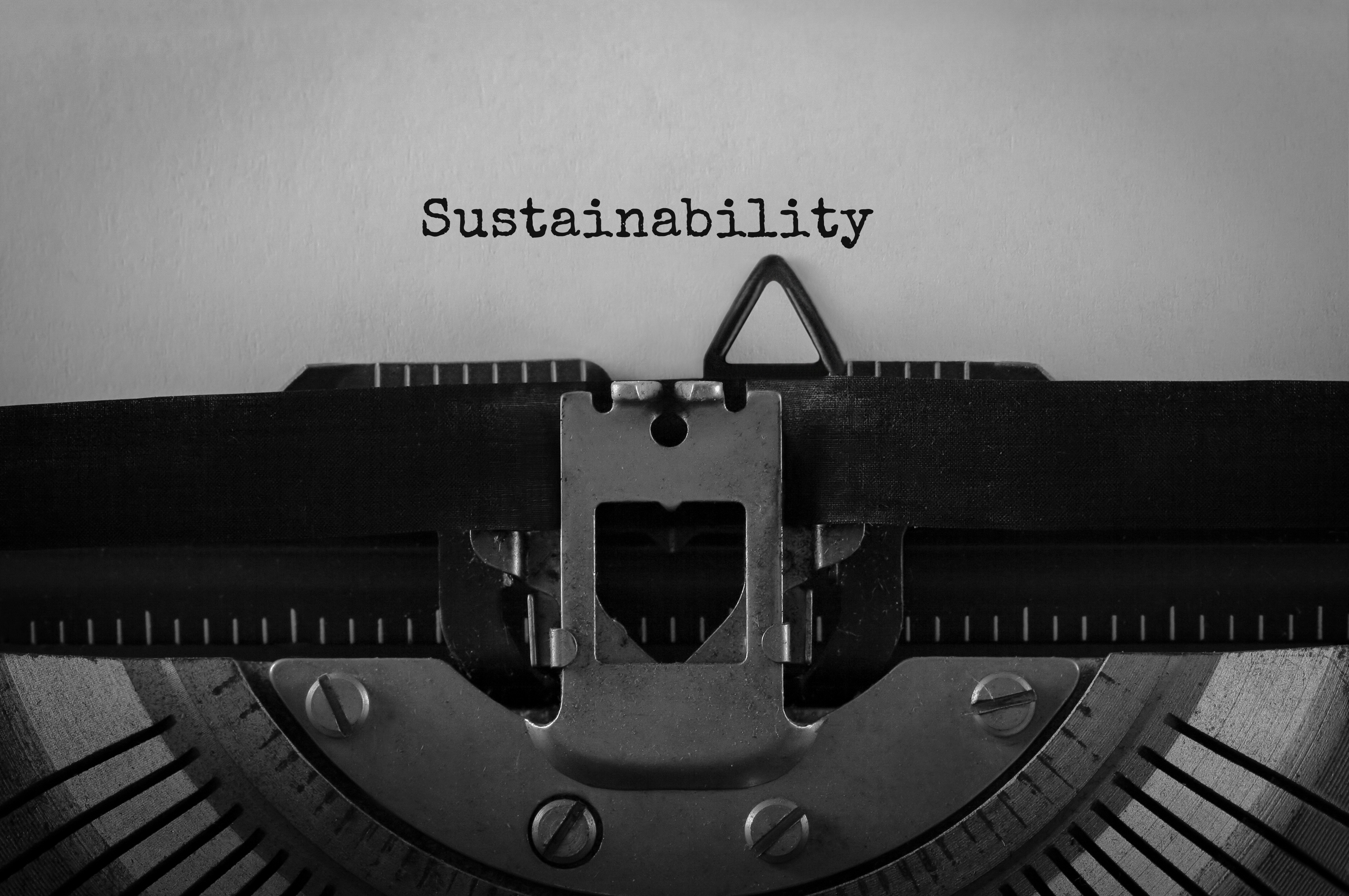 Text Sustainability typed on retro typewriter, concept